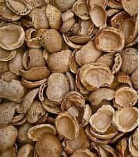 Ingredientes Del Turrón Almendras